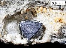 220px-Geodized_brachiopod