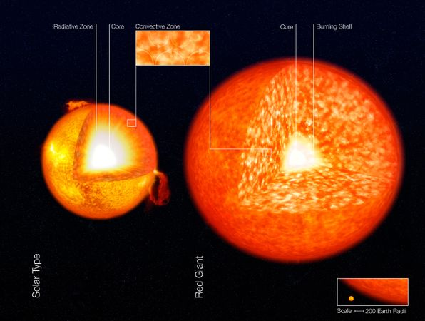 596px-Structure_of_Stars_(artist's_impression) (2)