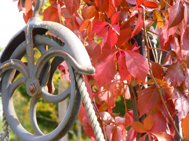Pulley Free Stock Photo - Public Domain Pictures