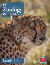 Zoology Printables 1-4 Cover for Store